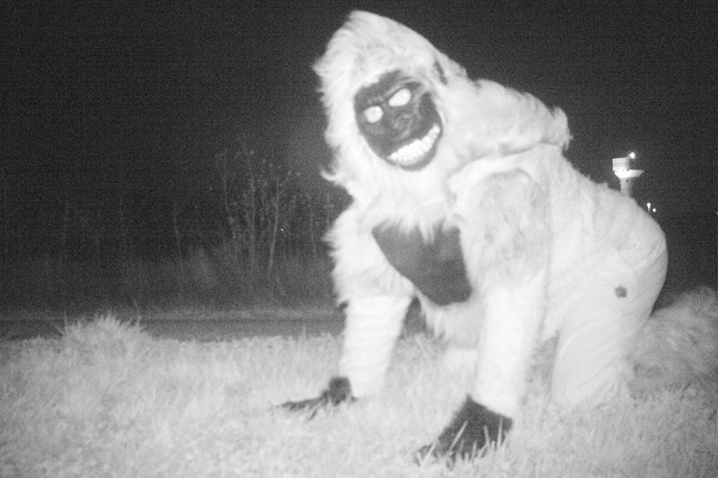 wildlife camera police department people in costumes