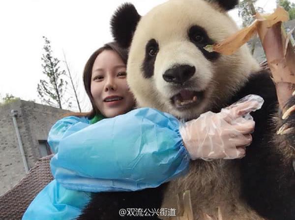 giant panda selfies