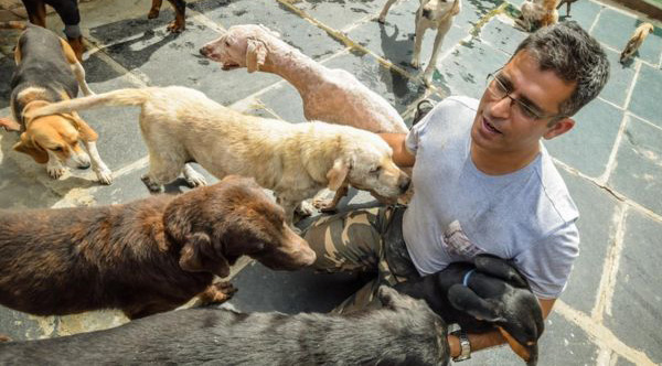 Software Engineer Spends His Spare Time Looking After 735 Abandoned Dogs.