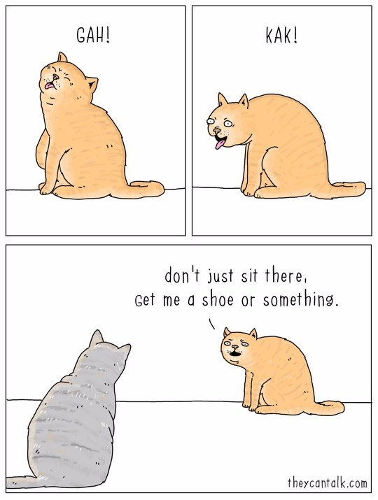 8 Comics From They Can Talk That Totally Nail What Cats Think