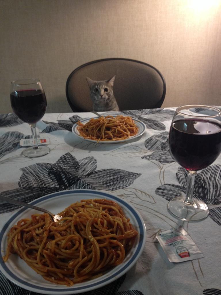 cat dinner date 1