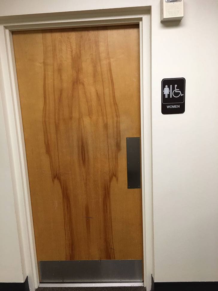 Woman shares photos of the bathroom doors in her company 39 s for Bathroom seen photos