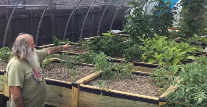 man builds free gardens rescues bees new orleans