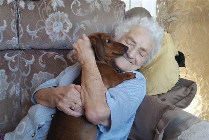 woman dog alzheimers helps good news happy stories