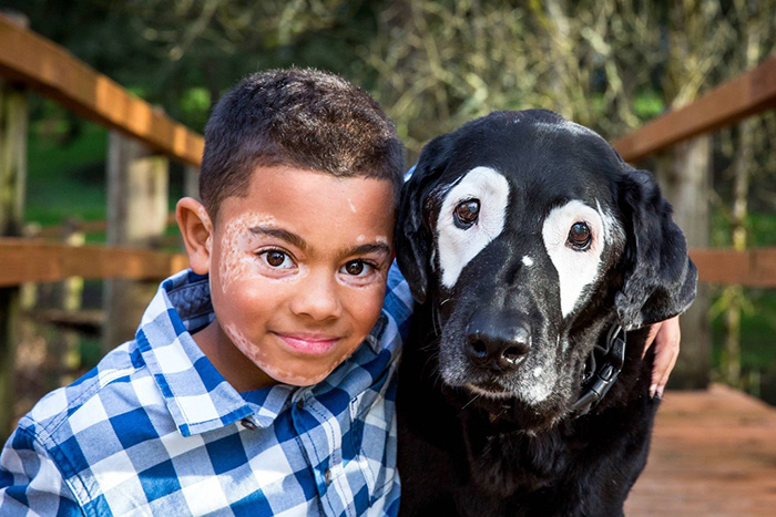 boy dog with vitiligo