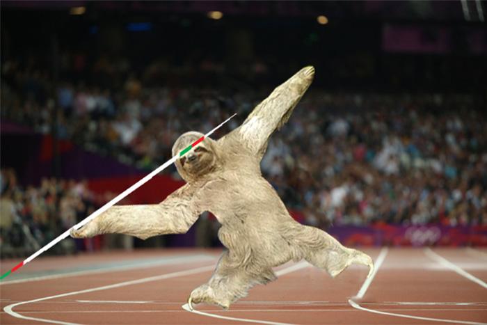 sloth rescue photoshop