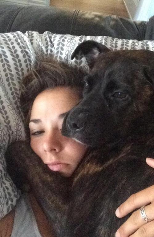dog adopted hugging
