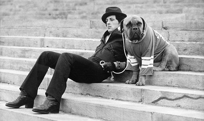 stallone dog tribute Rocky
