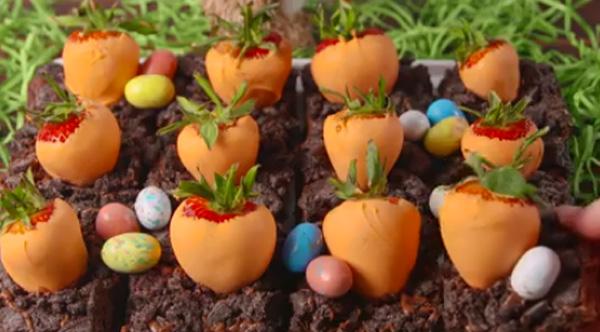 Carrot Patch Brownies Dip Strawberries In Orange Frosting