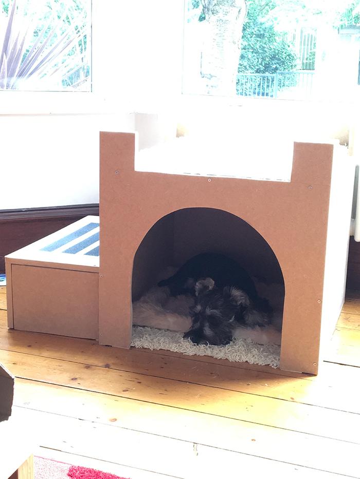 dog castle bed