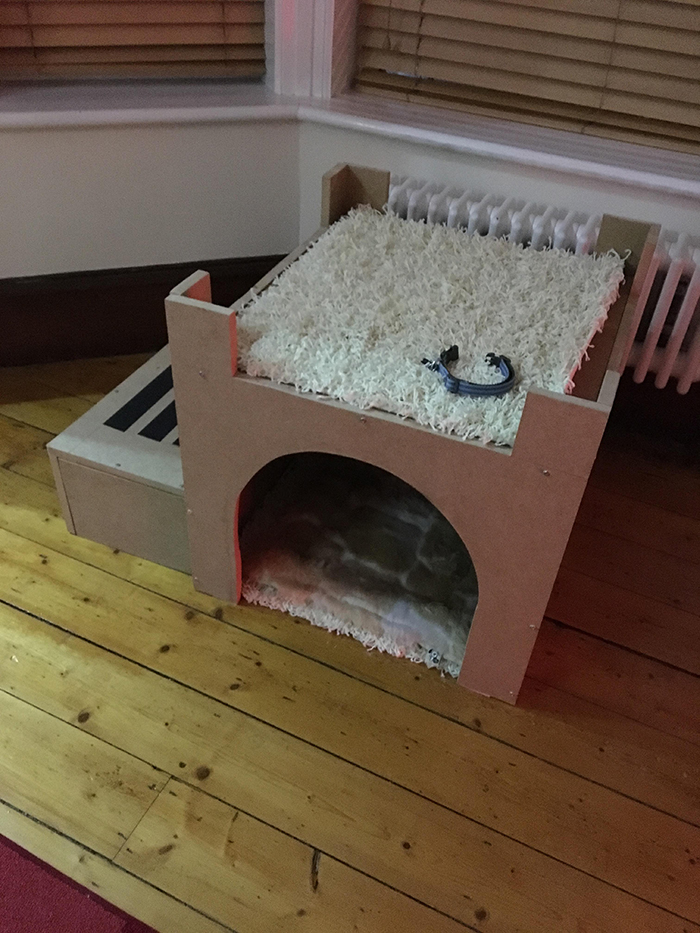 Owner Builds His Dog A Castle Bed So He Can Watch The