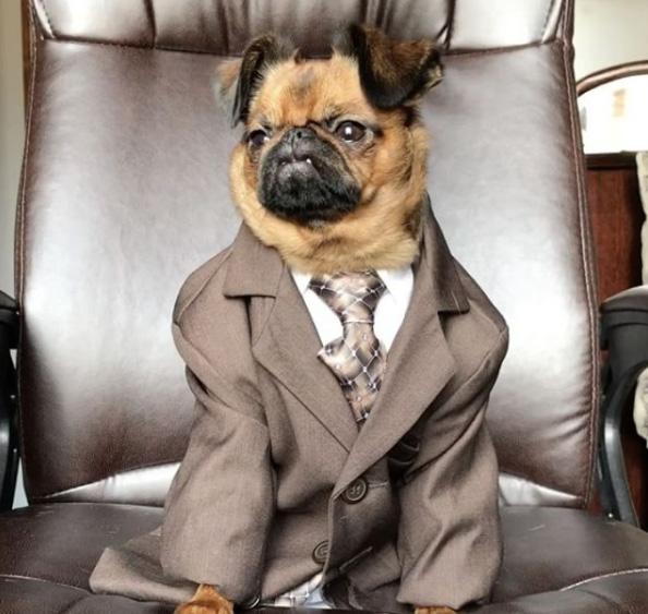god business suit looks like used car salesman