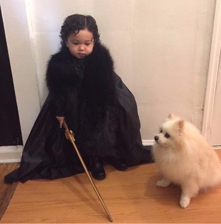 jon snow and wolf cosplay kid and dog