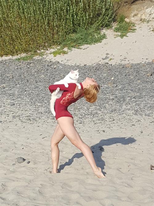 cat dancer photo on beach