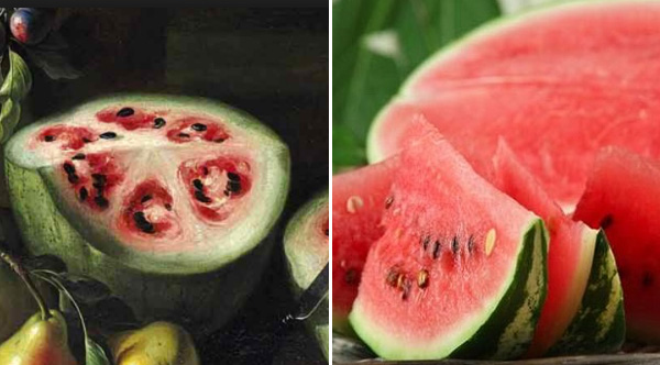 This Is What Fruits And Vegetables Looked Like Before