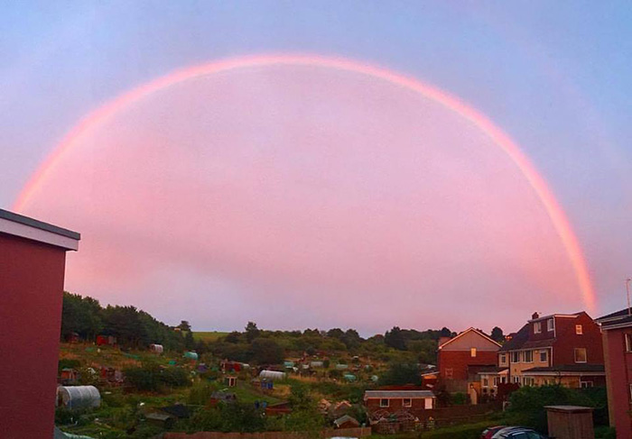 rare pink rainbow england