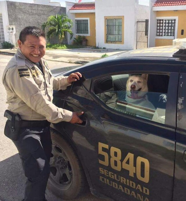 Heartwarming Picture Of Cop Helping A Hungry Man Goes: Cop Brings Home A Renegade Doggy