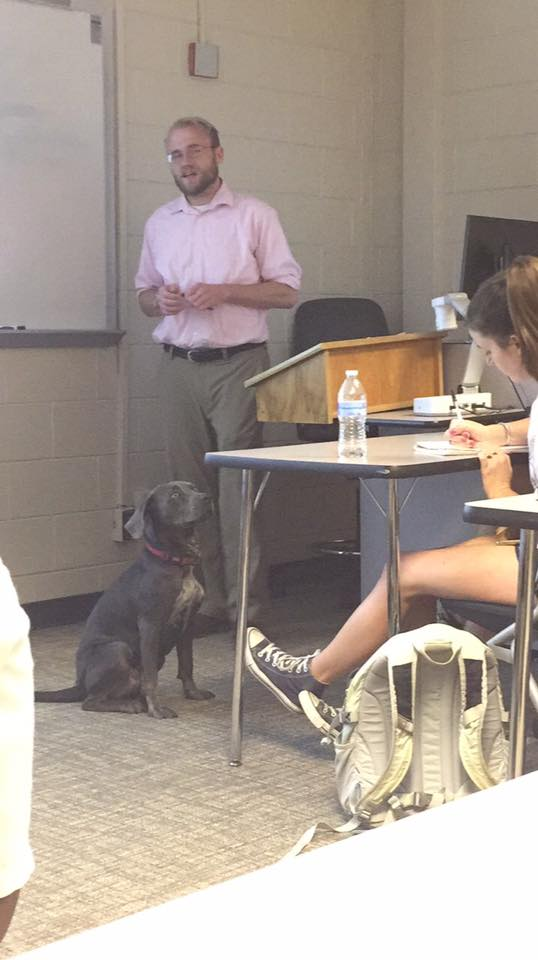 girl asks teacher to bring dog to class