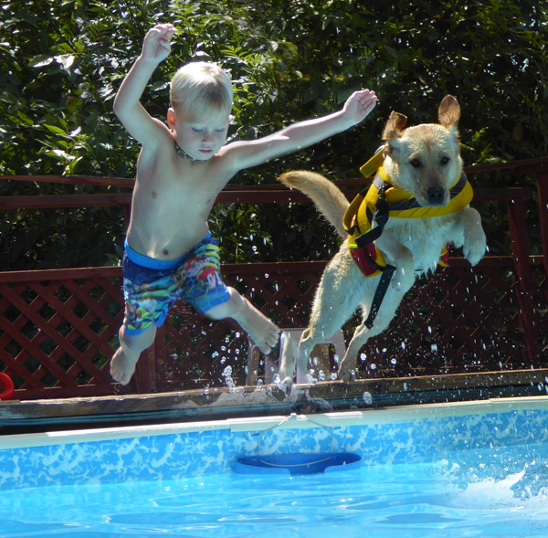 dog saves special needs kids drowning