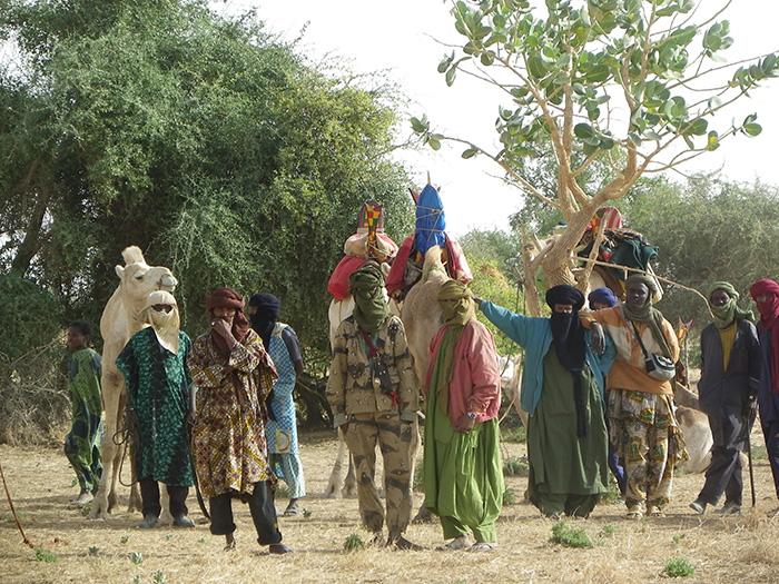 Mali elephant brigade