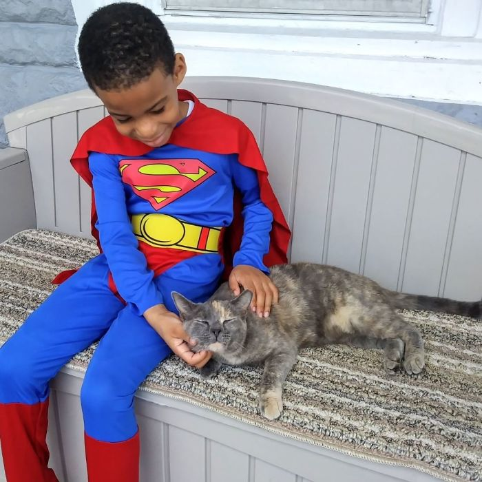 boy superhero costumes stray cats