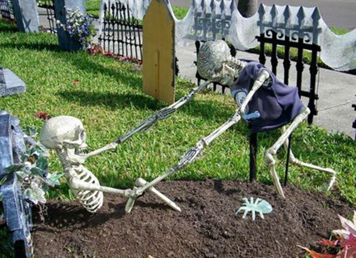 Funny Skeleton Decorations