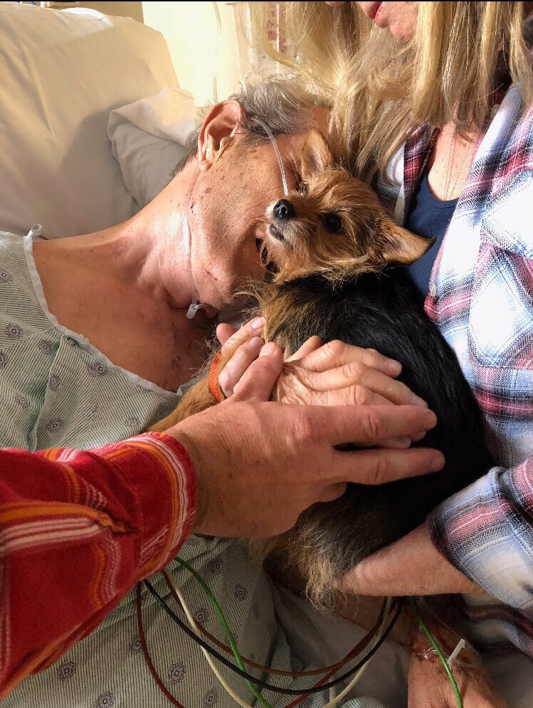 nurses sneak dog into hospital to say goodbye