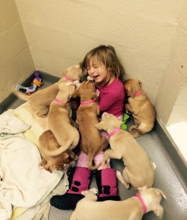 girl tackled by puppies at rescue