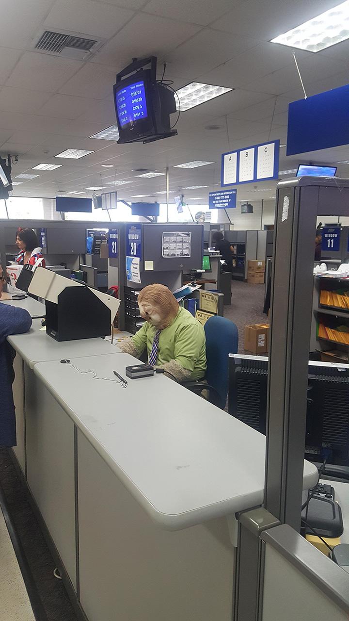 DMV employee dresses as sloth on Halloween