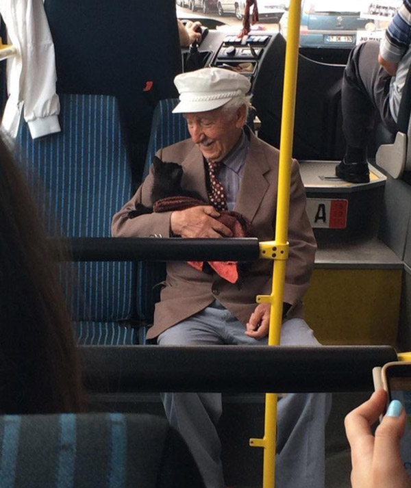 happy old man and cat on bus