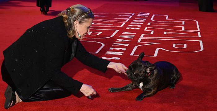 Carrie Fisher's Dog Attended The Premier Of 'The Last Jedi' To Watch Mom's Final Film