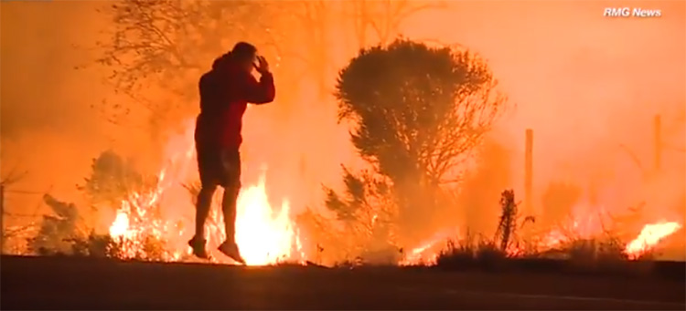 man rescues wild rabbit wildfire fire california