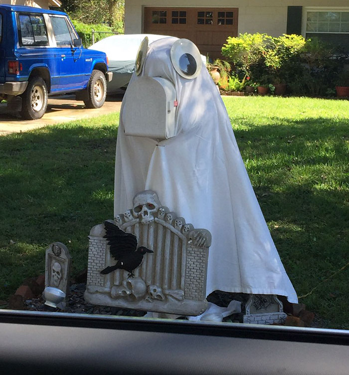 neighbor dresses up manatee mailbox