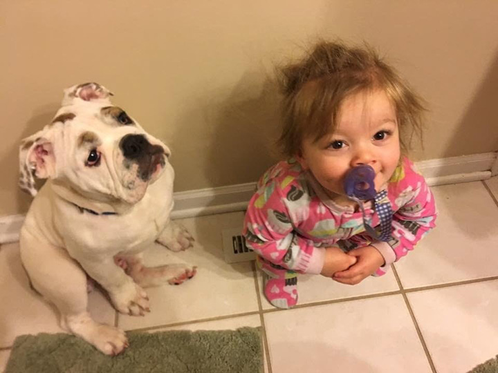 baby and puppy fight over warm vet
