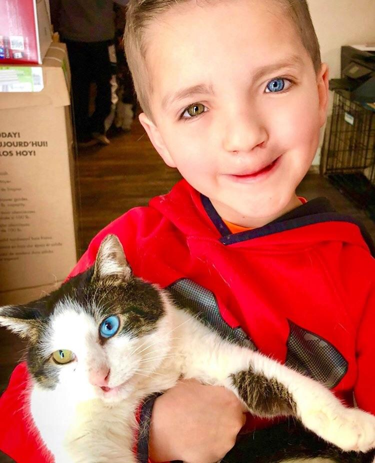 cat and boy with rare eyes cleft lip
