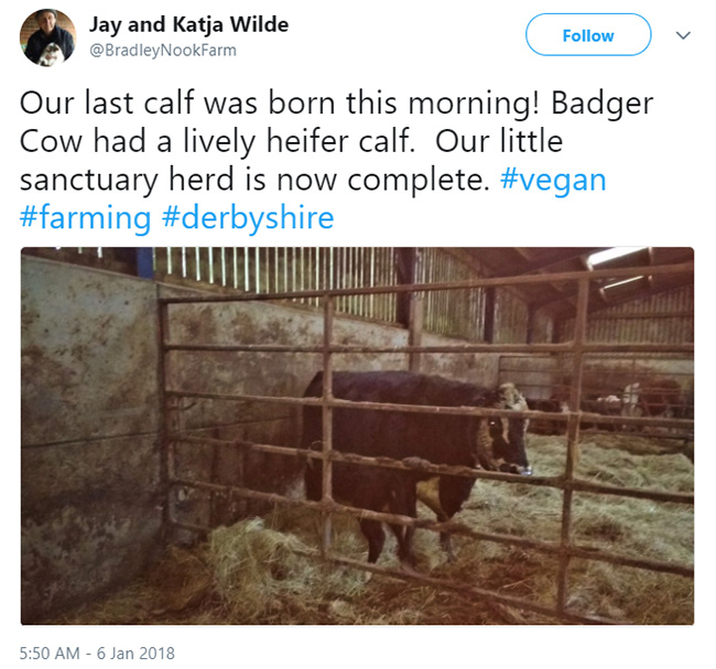farmer goes vegan good news