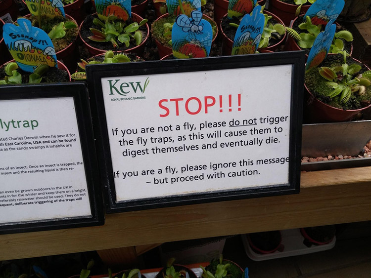 funny venus fly trap sign
