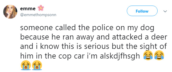 someone called cops on dog chasing deer
