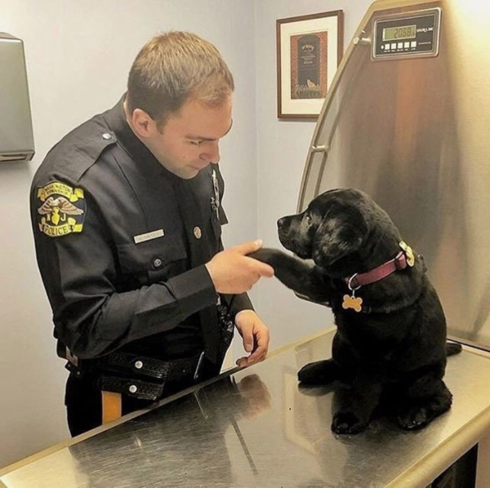 cop dog on first day