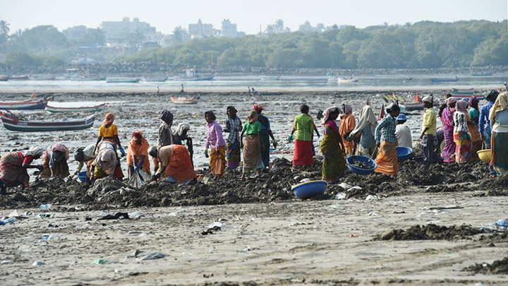 volunteers remove 12 thousand tons of plastic from beach India