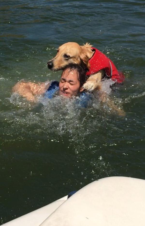 dog tries to drown sister at lake funny