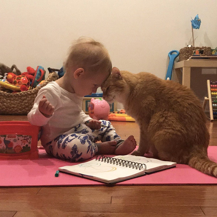 cute picture of toddler with cat