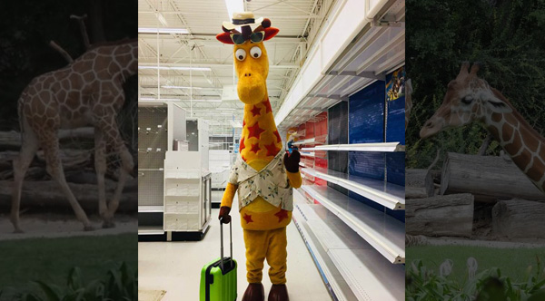 The San Antonio Zoo Wants To Give Toys R Us Mascot Geoffrey The