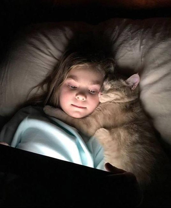 cat and little girl snuggling in bed