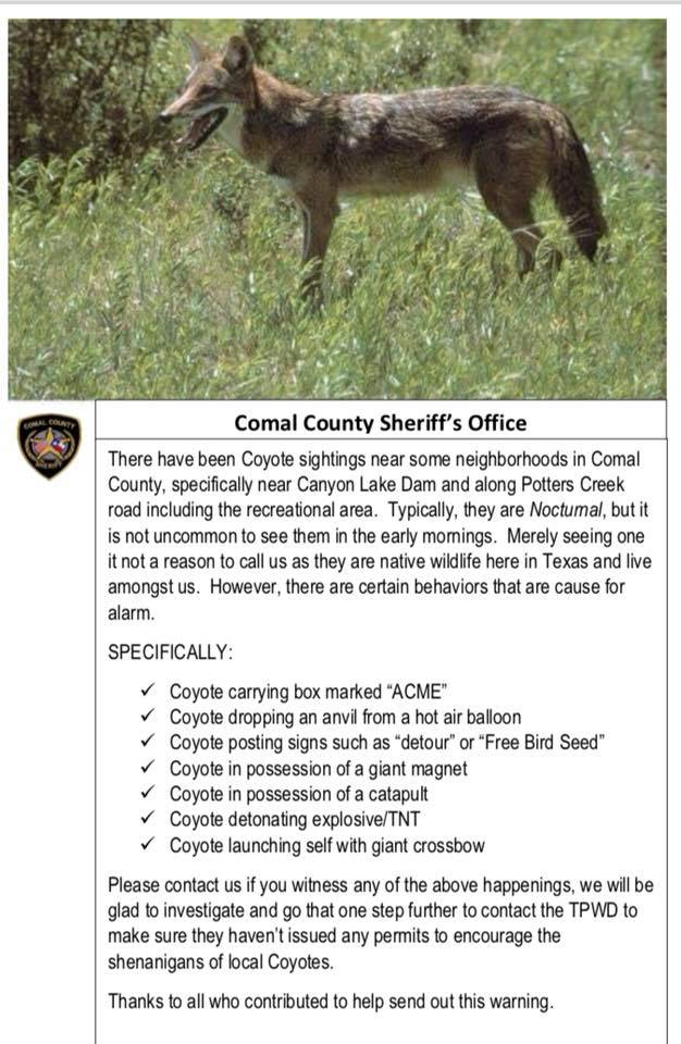 sheriff office posts coyote PSA