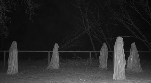 10 Creepy True Stories That Will Give You Chills