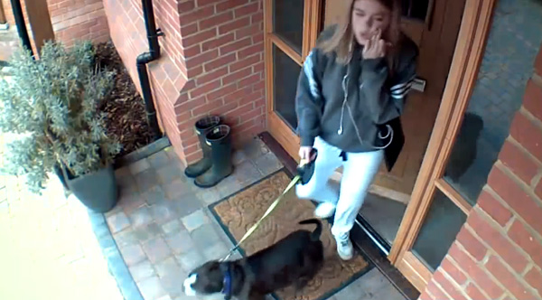 Hilarious Video Shows Dog Take Woman Out Before She Can