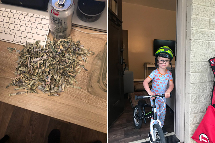 toddlers shreds 1000 dollars US fixes it