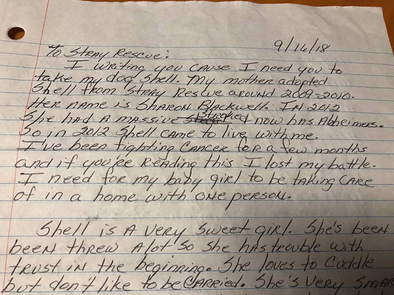 woman with cancer writes letter to shelter to find dog home