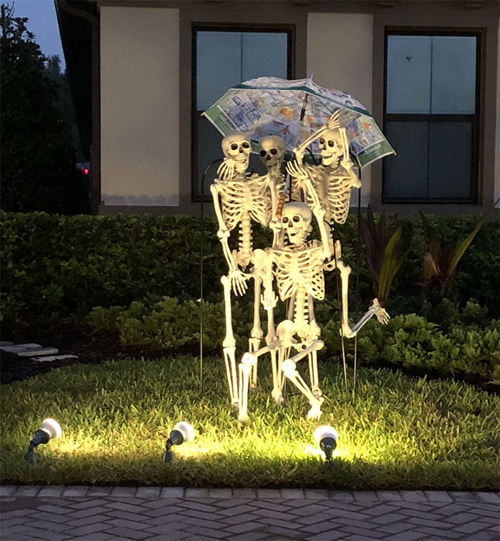 This House Displays Their Halloween Skeletons In A ...